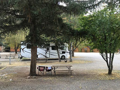 RV and chicken in campsite