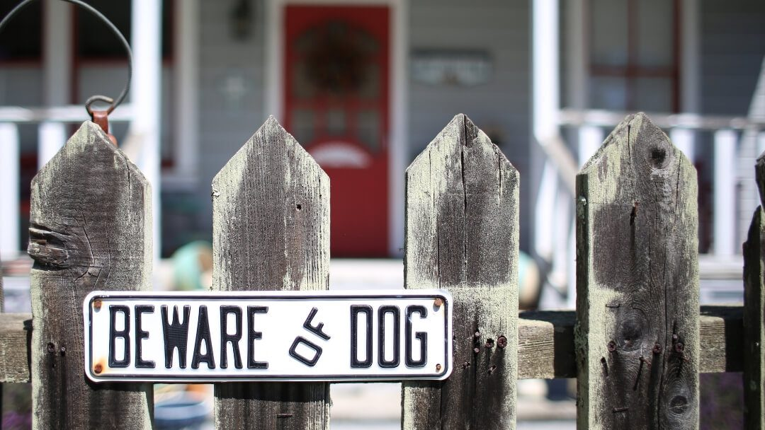 Picket fence in front of house with beware of dog sign