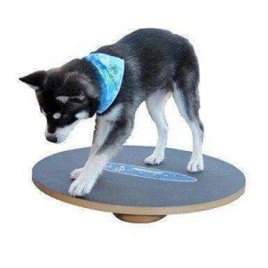 20 inch small wobble board